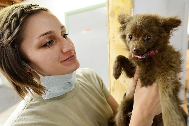 veterinářka a pes