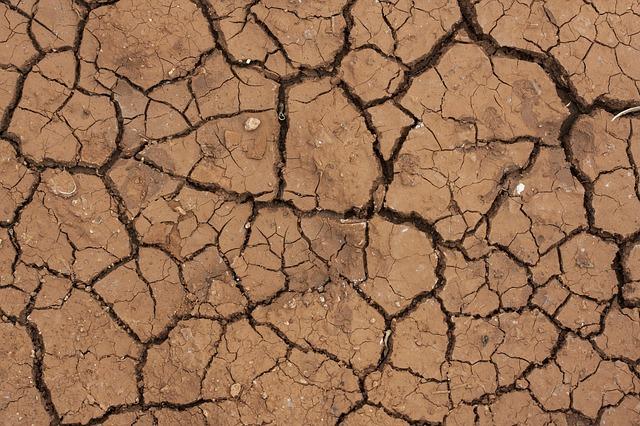 popraskaná půda